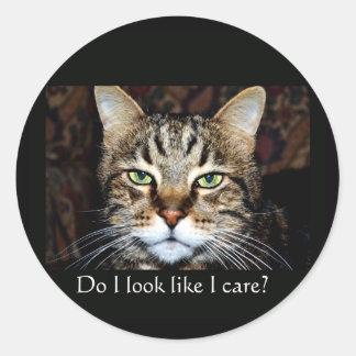 Do I look like I care Stickers