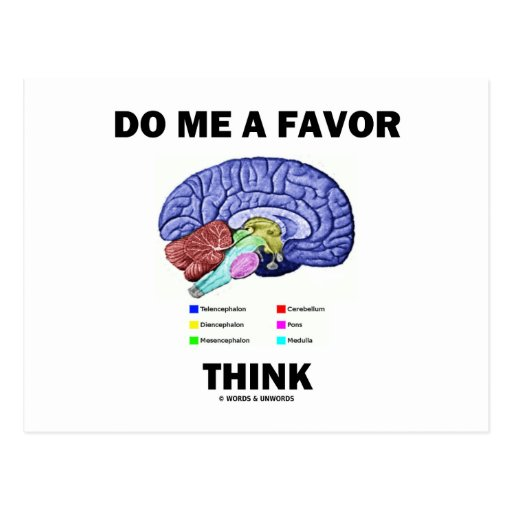 Do Me A Favor Think (Brain Anatomy Humor) Post Card