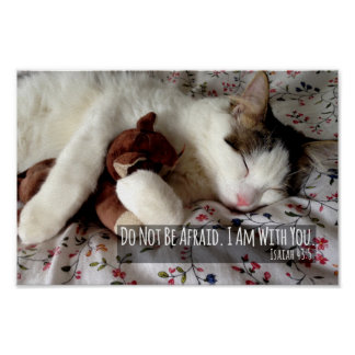 Do Not Be Afraid Cat Sleeping With Teddy Bear Poster