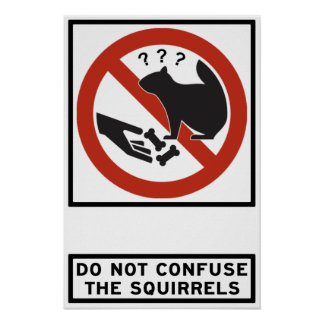 Do Not Confuse the Squirrels Highway Sign Print