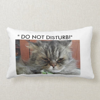 """""""DO NOT DISTURB""""  CAT PILLOW"""