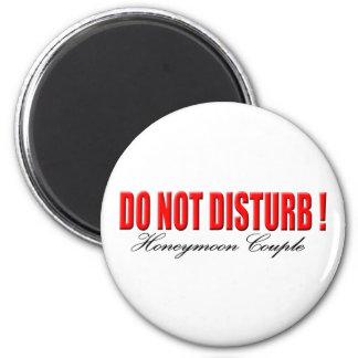 Do Not Disturb Honeymoon Couple Magnet