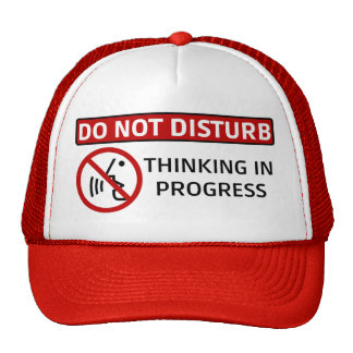 DO NOT DISTURB: Thinking in Progress (Red Hat) Cap