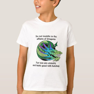 Do Not Meddle in the Affairs of Dragons T-Shirt