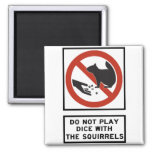 Do Not Play Dice with the Squirrels Highway Sign Fridge Magnet
