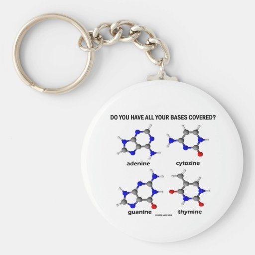 Do You Have All Your Bases Covered? (DNA Bases) Key Chains