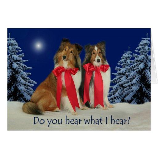 Do You Hear? Sheltie Christmas Card