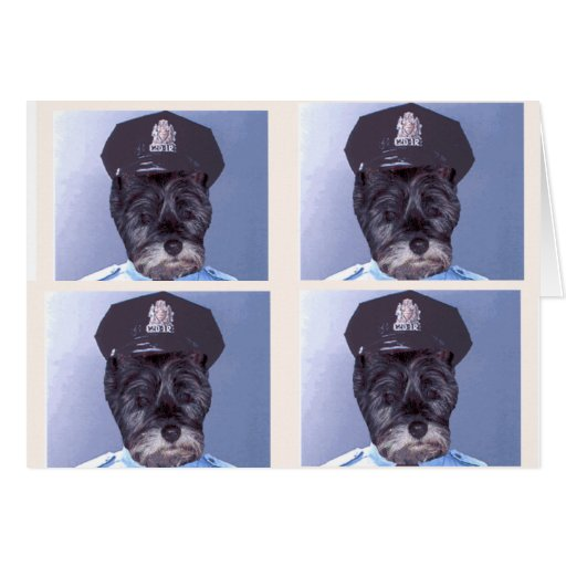 Do You Know Why I Pulled you over ? Greeting Cards