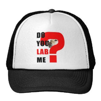 Do You Lab Me Cap