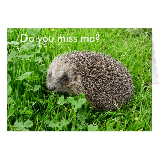 """""""Do you miss me?"""" Card"""