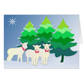Do you see little sheep? greeting card
