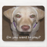 Do you want to play? Yellow Lab Mousepad