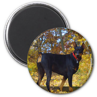 Doberman 6 Cm Round Magnet