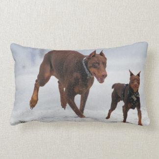 Doberman and Min Pin - LOOK! A Mini Me! Throw Pillow