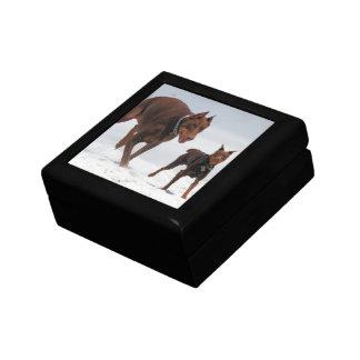 Doberman and Min Pin - LOOK A Mini Me Keepsake Box