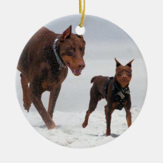 Doberman and Min Pin - LOOK A Mini Me Ornament