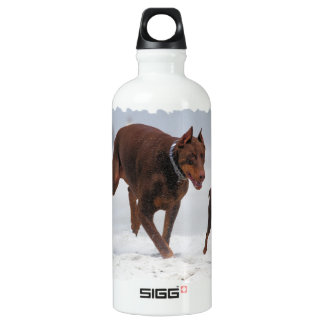 Doberman and Min Pin - LOOK! A Mini Me! SIGG Traveler 0.6L Water Bottle