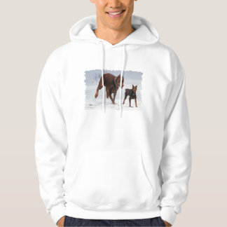Doberman and Min Pin - LOOK! A Mini Me! Sweatshirts