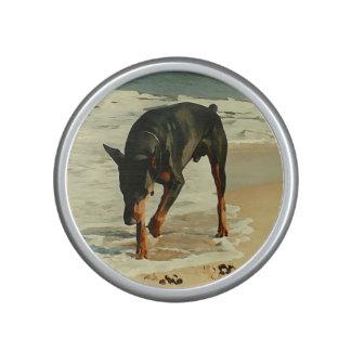 Doberman at the Beach Painting Image Speaker