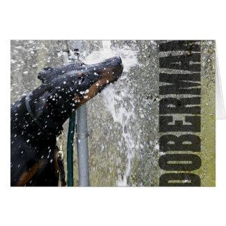 Doberman at the Fountain Card