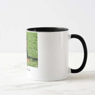 Doberman:  Beauty, Grace and Power Mug