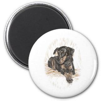 Doberman Dog Natural Ears 6 Cm Round Magnet