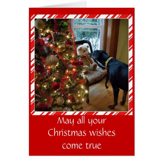 Doberman dog, Teddy Bear, Christmas greeting card