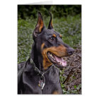 Doberman Glee! Card