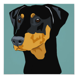 Doberman Head, Black, Uncropped 13 Cm X 13 Cm Square Invitation Card