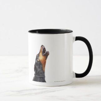 Doberman howling, close-up mug