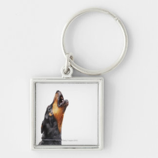 Doberman howling Silver-Colored square key ring