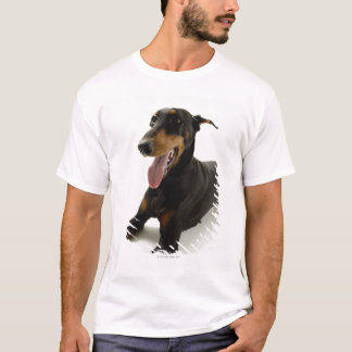 Doberman Pinscher 2 T-Shirt