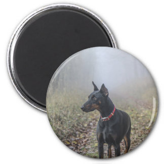 Doberman Pinscher 6 Cm Round Magnet