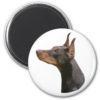 Doberman Pinscher headstudy-red Magnet