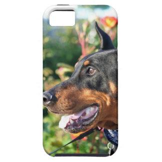 Doberman Pinscher iPhone 5 Cases