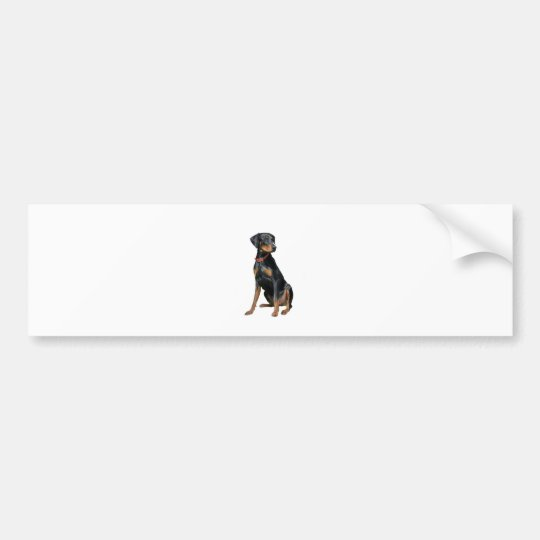 Doberman Pinscher (natural) Bumper Sticker