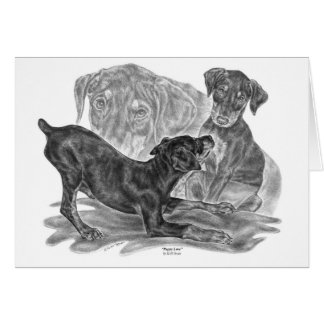 Doberman Pinscher Pups Drawing by Kelli Swan Card