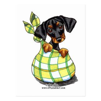 Doberman Pinscher Sack Puppy Postcard