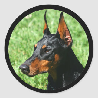 doberman pinscher stickers