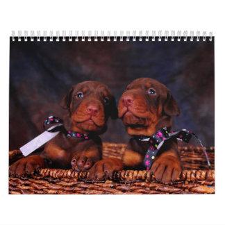 Doberman Puppy Calendar 2012