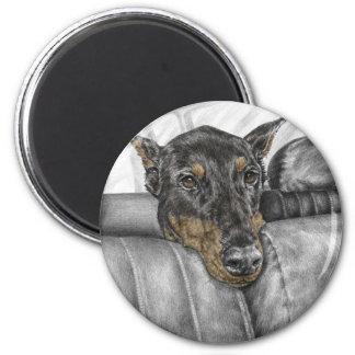 Doberman Riding in Car 6 Cm Round Magnet