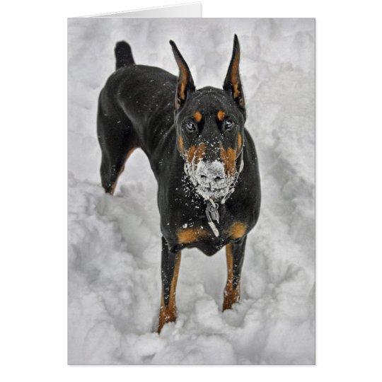 Doberman Snow Cone Card