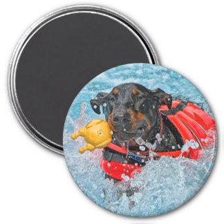 Doberman Swimming With Favorite Toy 7.5 Cm Round Magnet