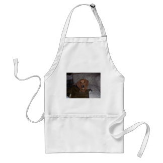 Doc the Dachshund Doxie Standard Apron