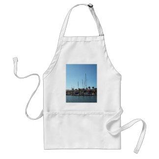 Docked boats apron