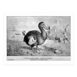 Dodo art postcard