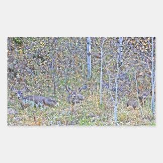Doe deer and fawns rectangular sticker