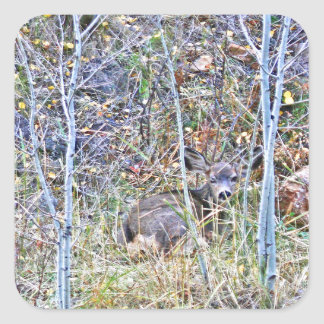 Doe deer and fawns square sticker