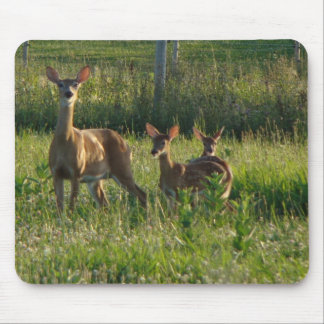 Doe With Fawns Mouse Pad