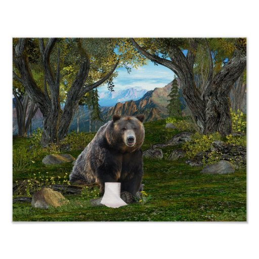 Does a bear poster